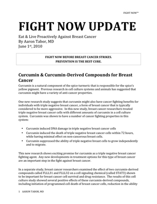 Fight Now Breast Cancer Newsletter - June 2010